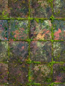 groene aanslag terras